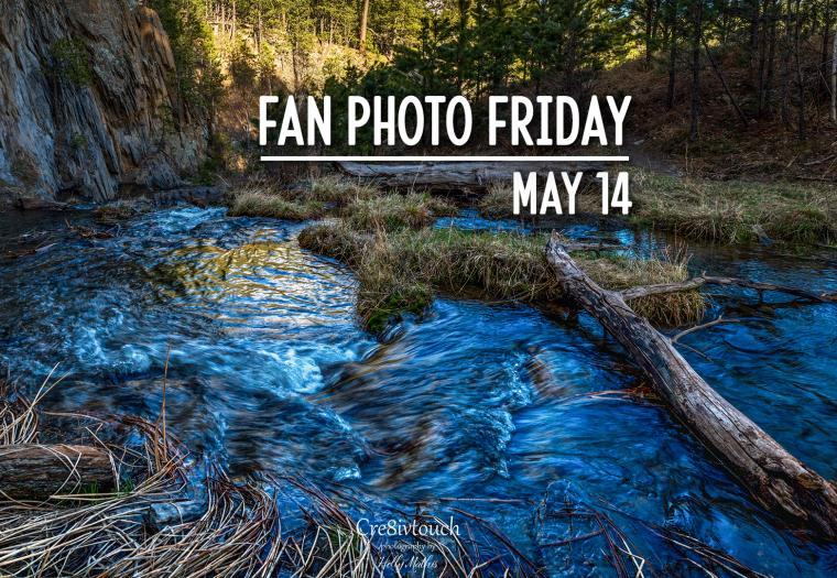 Fan Photo Friday | May 14, 2021