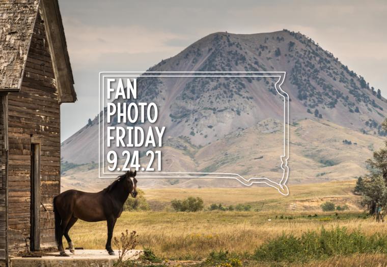 Fan Photo Friday | Sept. 24, 2021