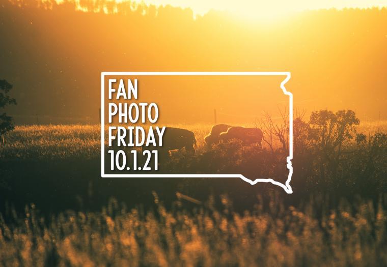 Fan Photo Friday | Oct. 1, 2021
