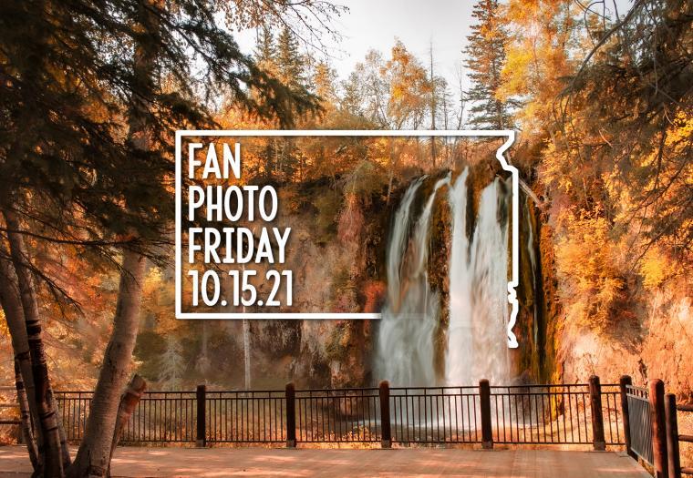 Fan Photo Friday | Oct. 15, 2021