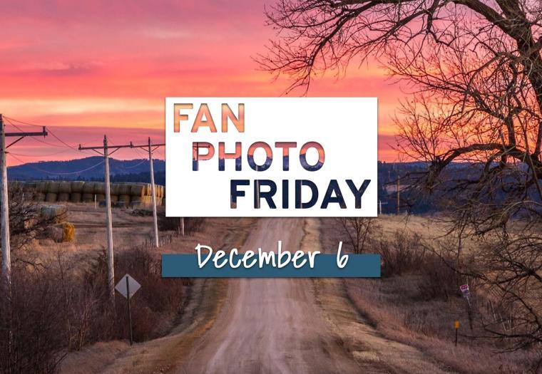 Fan Photo Friday | December 6, 2019