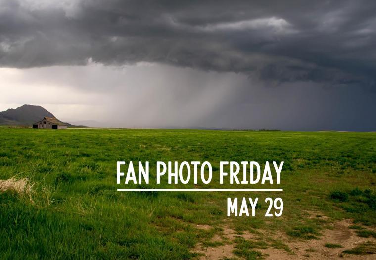Fan Photo Friday | May 29, 2020