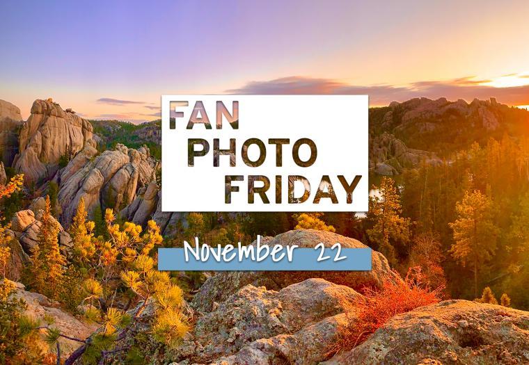 Fan Photo Friday | November 22, 2019