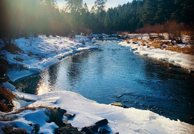 Spring Creek in the Winter
