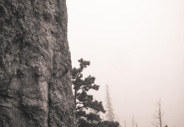 On the way to Black Elk Peak