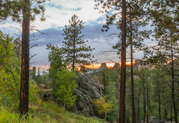 Needles highway—looking for the sunset