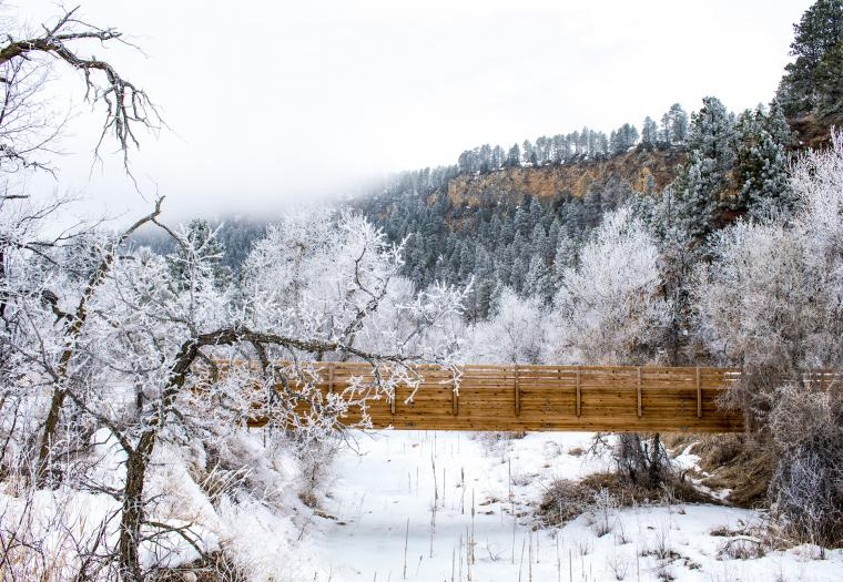Frosted Canyon Bridge