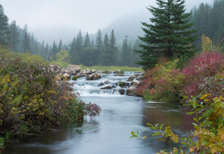 Fall and fog descend onto Spearfish Canyon
