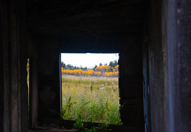 A Peek Through the Past