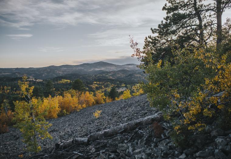 Roosevelt Fall